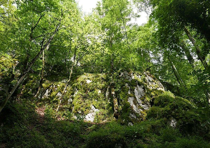 Felsen bei Beuron im Donaubergland